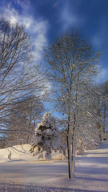 Another from after the Snow... NewEnglandWinter Snowscape Snow Covered Snow Day Newenglandphotographer Maine Scenery Mainephotography Mainephotographer