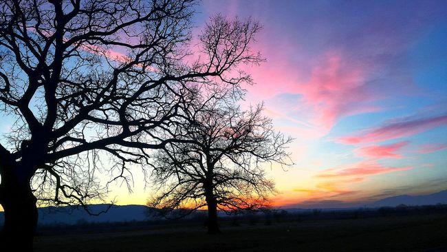 Picture View Wednesday Old Mountain Mountain Mountains Mountain View City Ovoshtnik Beautiful Sunset Tree Beauty Nights Trees And Sky Trees Sunset Sky Clouds Night Love Sky Big Sky Big Clouds Dramatic Sky Colour Photography Documenrary Photography Seascape Skyscape Taking Photo Beautiful Beauty Photo