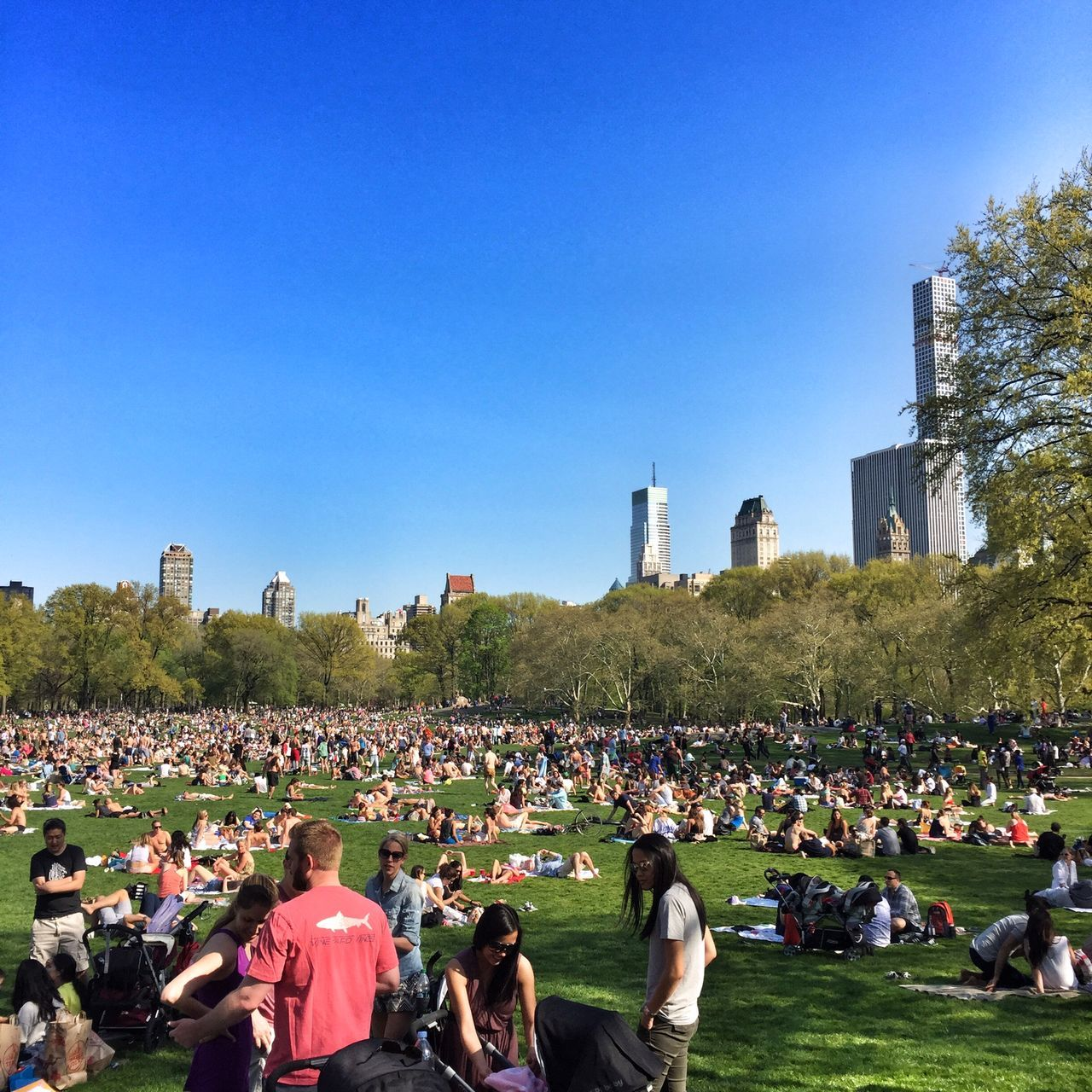 Central Park Summer Sheep Meadow New York New York City People Public Space Cityscape NYC Park Battle Of The Cities