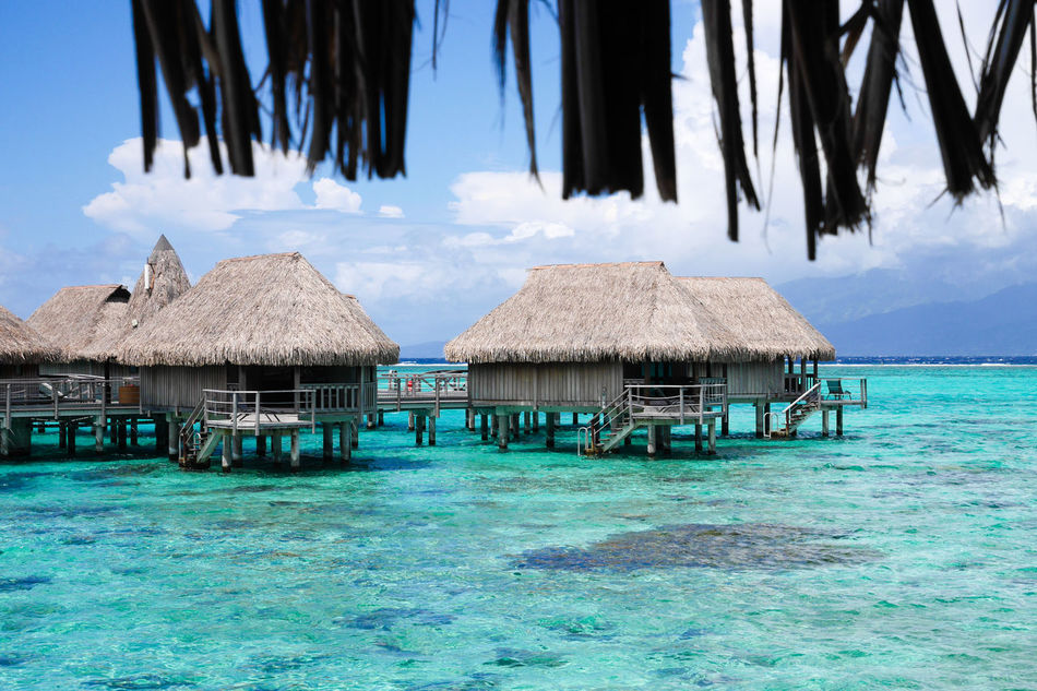 Bungalow Favorite Places French Polynesia Holiday Villa Honeymoon Horizon Over Water Moorea Moorea💕 Overwater Bungalow Romantic Sea Society Islands Tahiti Thatched Roof Tranquil Scene Tranquility Vacation Vacation Destination View From My Balcony Water Waterfront
