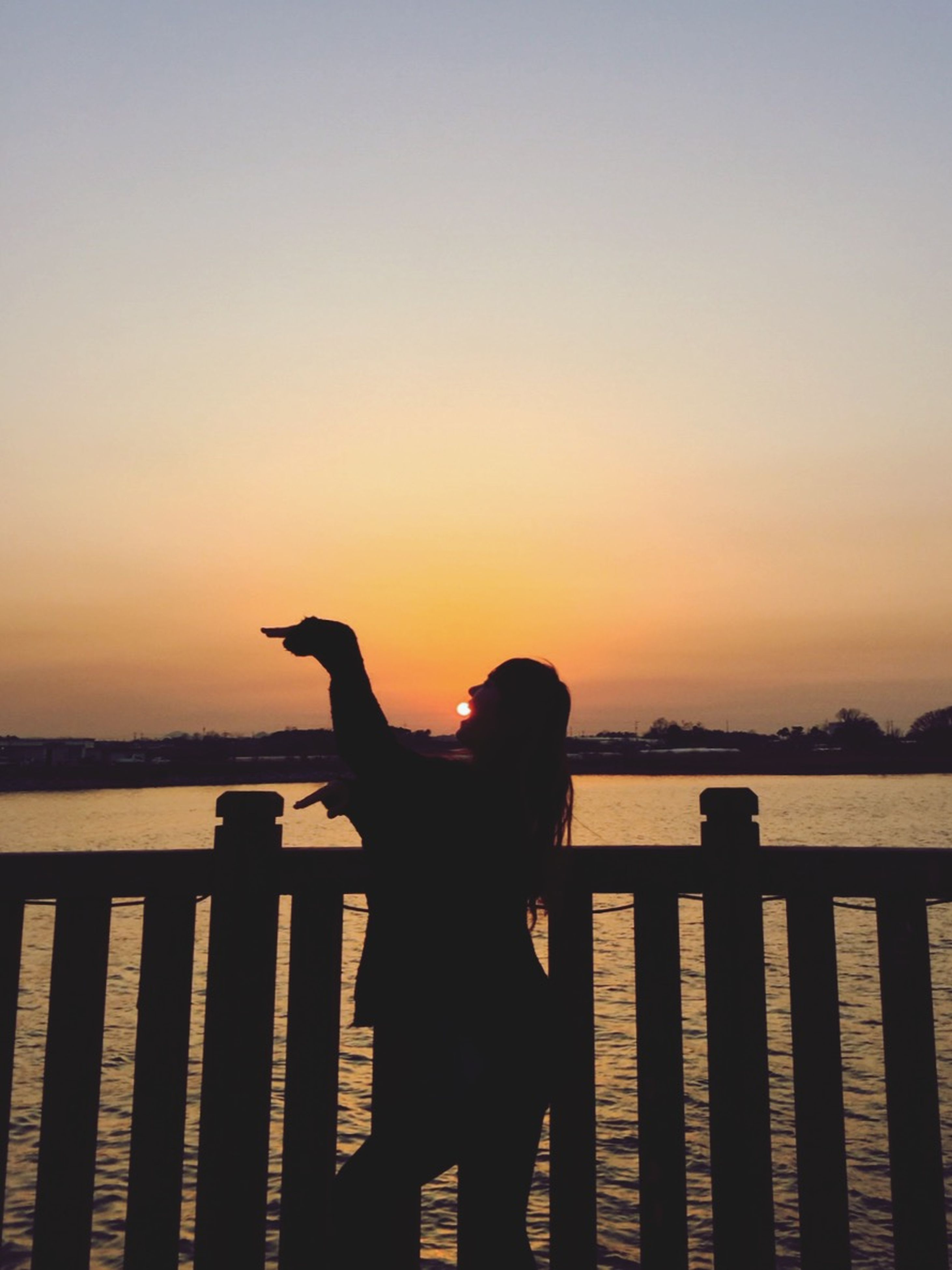 sunset, silhouette, water, copy space, clear sky, one person, orange color, tranquility, tranquil scene, sky, sea, animal themes, nature, one animal, standing, lake, scenics, beauty in nature, side view, idyllic