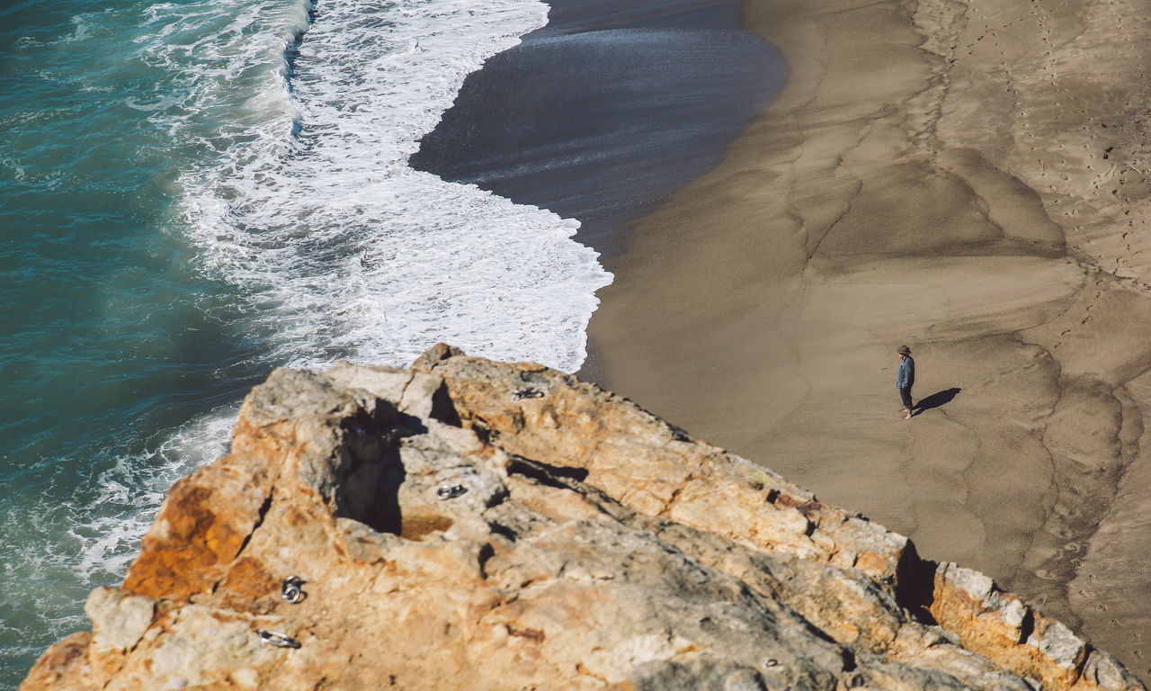 California Malibu Point Dume Point Dume State Beach Animal Themes Animal Wildlife Animals In The Wild Beach Beauty In Nature Bird Day High Angle View Nature No People Outdoors Perching Rock - Object Sand Sea Water Wave Breathing Space The Week On EyeEm Been There. Done That.