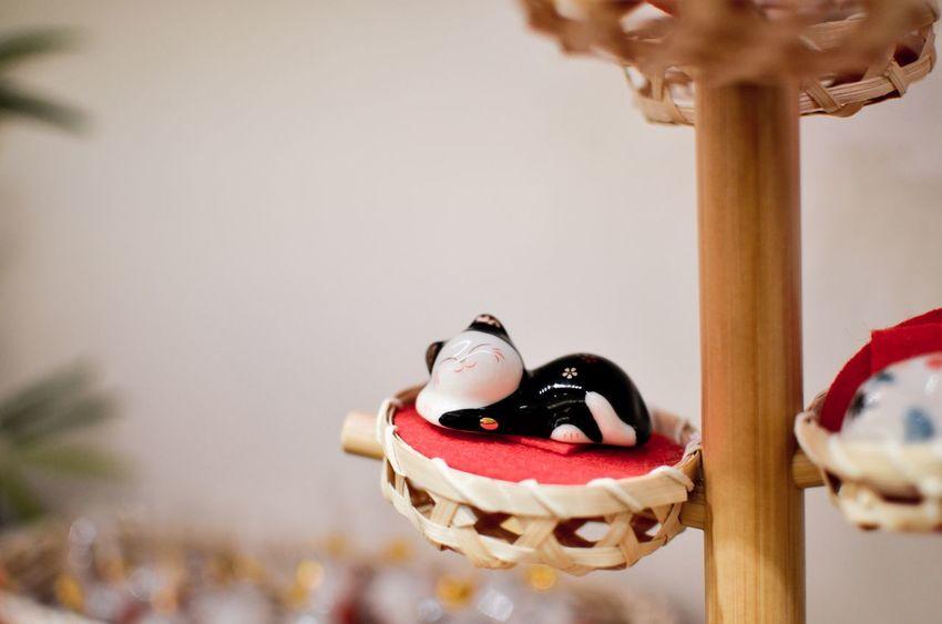 Fortune Cat Ornament Taiwan Close-up Figurine  Focus On Foreground Fortune Indoors  Manekineko