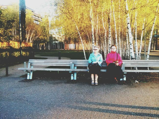 Streetphotography Bench