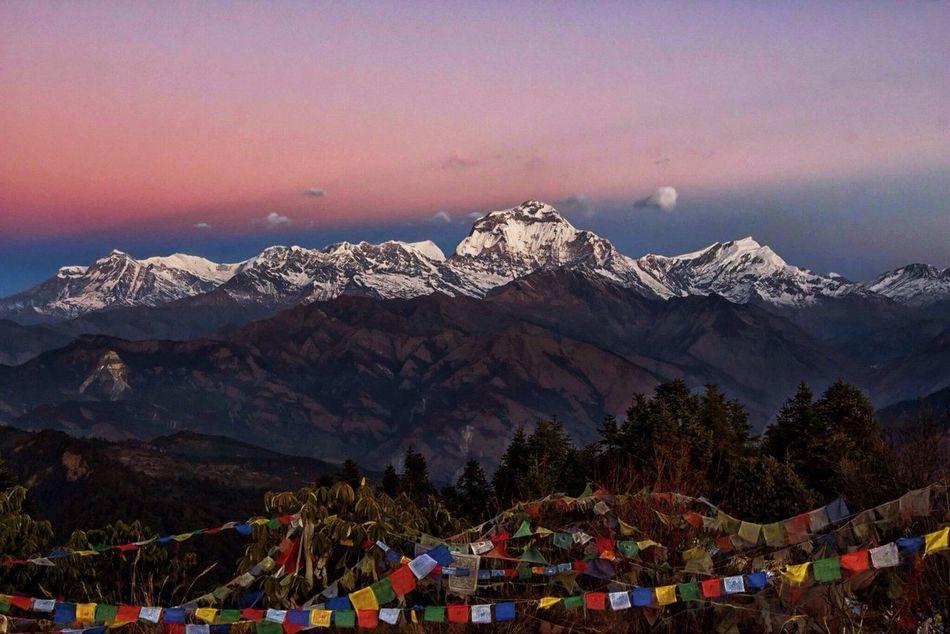Beautiful stock photos of annapurna, Annapurna Mountain, Beauty In Nature, Cold Temperature, Idyllic