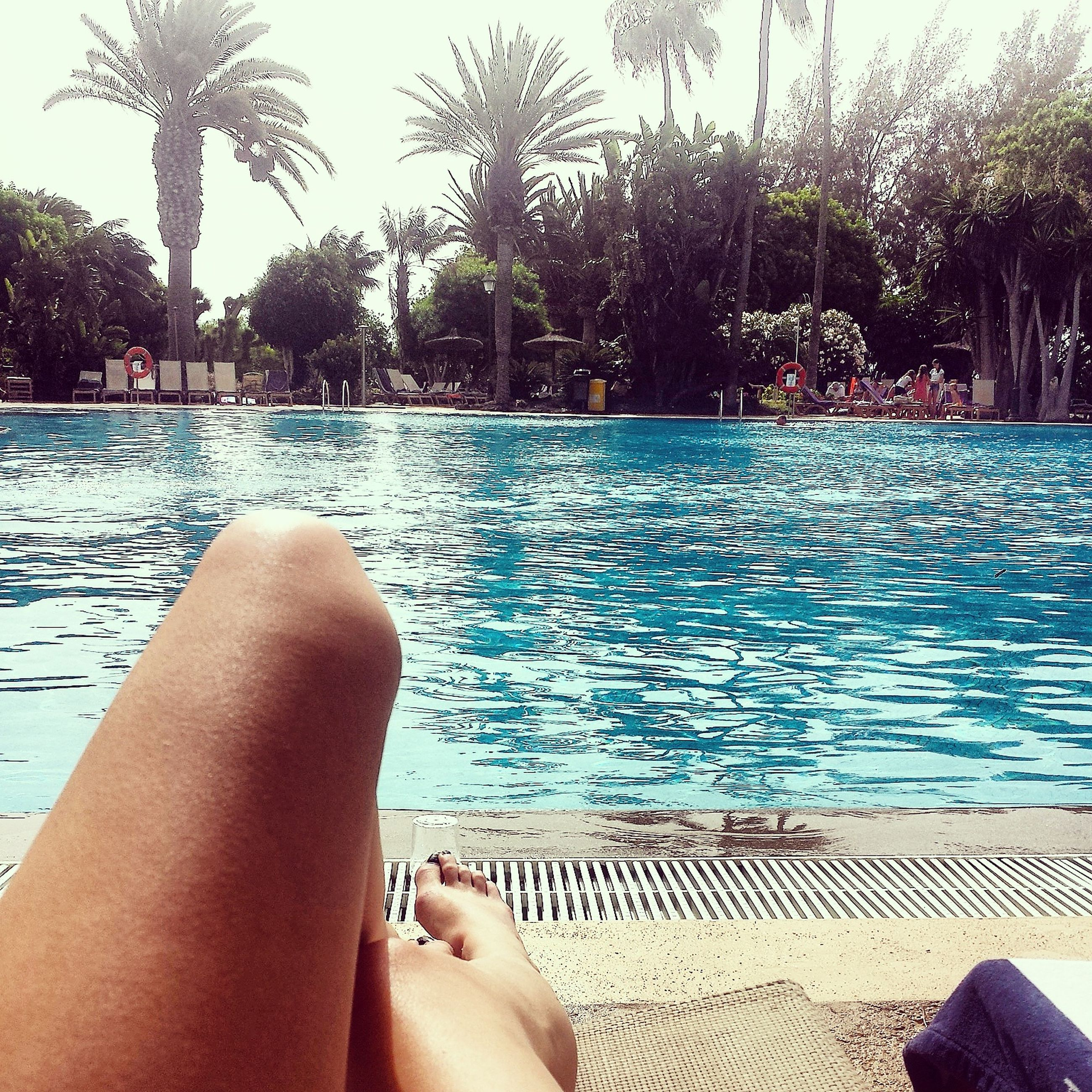personal perspective, low section, person, water, part of, barefoot, lifestyles, leisure activity, human foot, relaxation, swimming pool, tree, legs crossed at ankle, cropped, relaxing