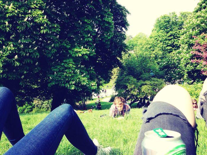 Sunny Sunshine Parc Des Buttes-Chaumont