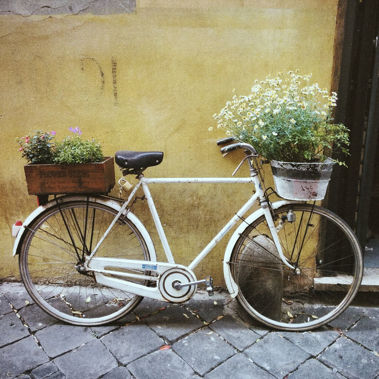 Beautiful stock photos of bike, Absence, Bicycle, Cycle, Day
