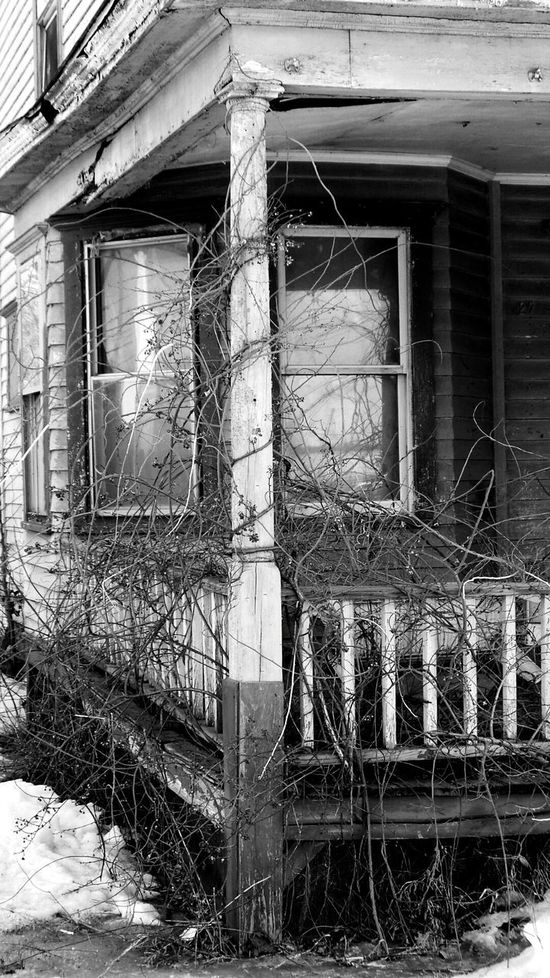 OpenEdit In Last Century From Where We Stand Nature Reclaims. Architecture Abandoned If Walls Could Talk Architecture_bw Reflections Window Reflections Check This Out From Where I Stand Up Close Street Photograpy