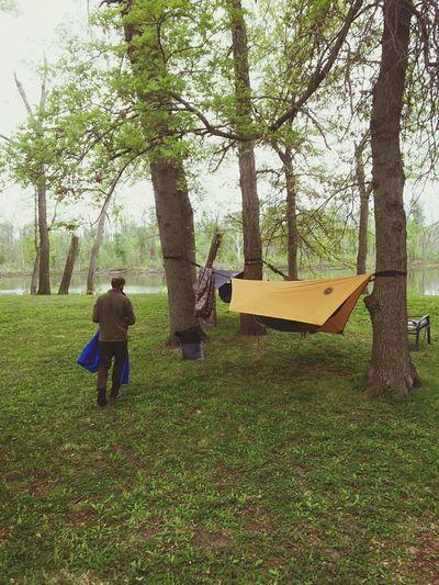 Camping Hammocks Friends Fun Good Times