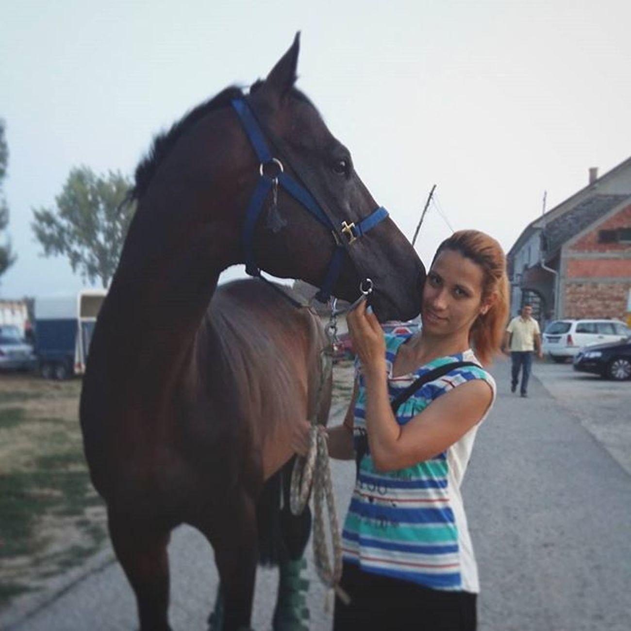 Liberty Alex ☺🏇🏇💖❤ Thoroughbredsofinstagram Thoroughbreds Horseracing Horsesofinstagram horselove equinelove equinelife equestrianlife purasangreingles caballo caballosdeinstagram