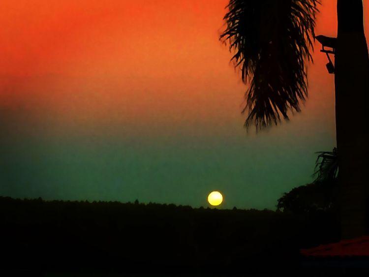 Moon Light Moon Shots EyeEm Team EyeEm The Best Shots Taking Photos Farm Avare SP BRASIL 🇧🇷☀️ Avare Now® Avare Heaven