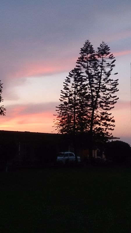 Hello World Mesmerizingsky Gangaghat sunset #sun #clouds #skylovers #sky #nature #beautifulinnature #naturalbeauty photography landscape On The Way