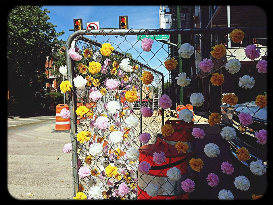 Somebody added Plastic Flowers to the Construction Fence