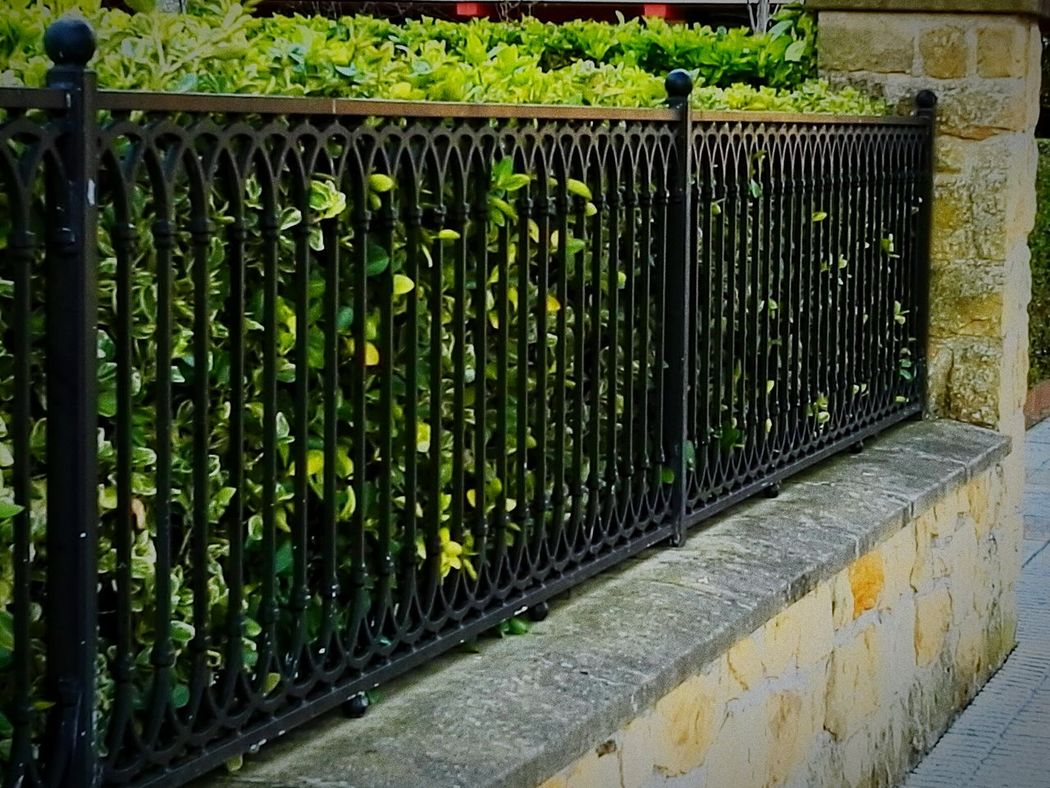 A la espera de alguien Taking Photos Negro Verde Seto Street Calle EyeEm Best Shots EyeEm Gallery EyeEm Best Edits Eyeemphotography Zarautz Gipuzkoa