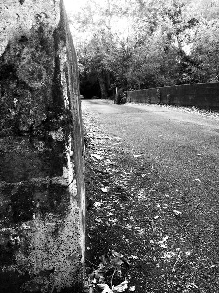 small Country Bridge in a small Wine Country California Backroads the day before The Wedding . Monochrome Blackandwhite Winecountry Northern California Traveling Traveling Photography Choatephotos Choatgrapy The City Light The City Light Breathing Space The Week On EyeEm Investing In Quality Of Life