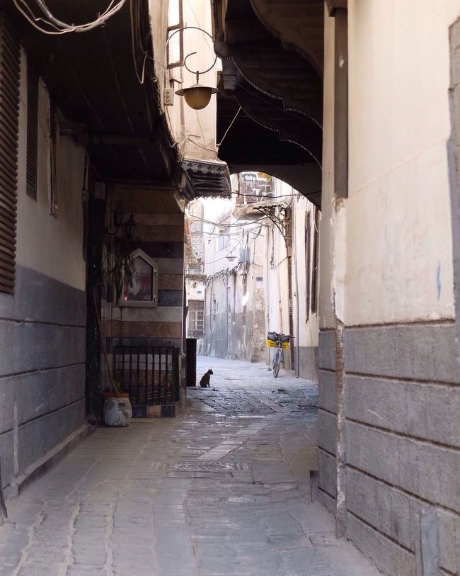 Streets of a very old town, Damascus. Architecture دمشق  Damascus  Syria  سوريا