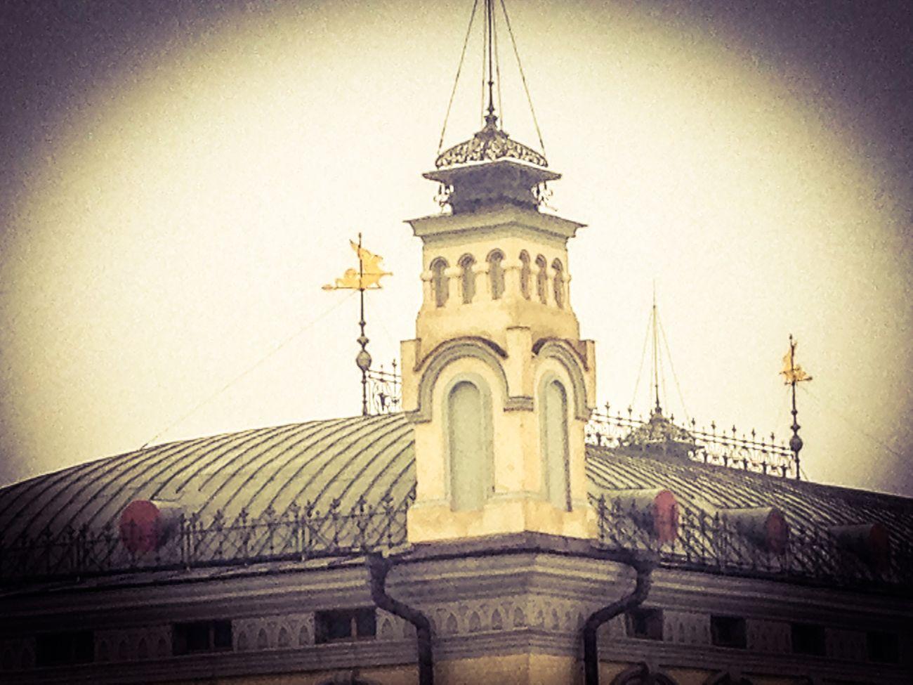 Roof top of National Opera of Ukraine