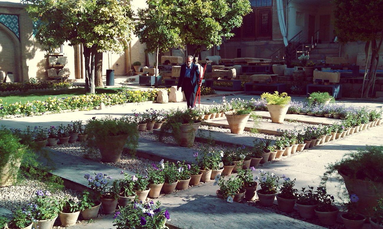 Day Garden Garden Flowers Garden Photography Gardening Gardner Iran Outdoors People Shīrāz Tree ایران باغبان شیراز موزه سنگ شیراز