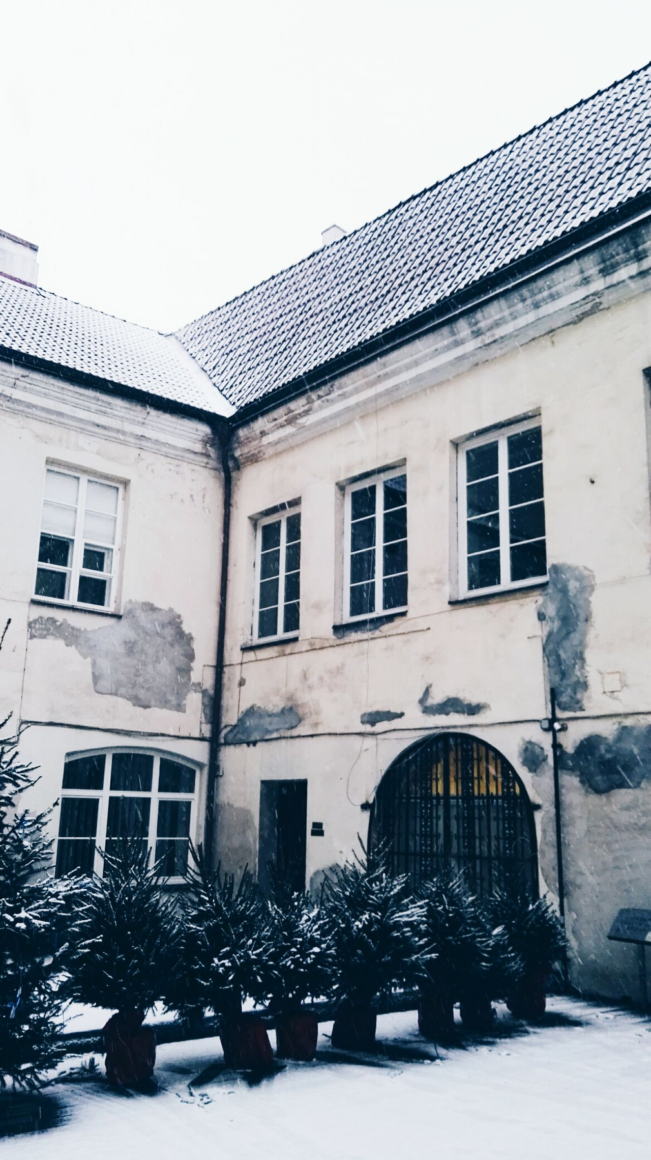 Window Building Exterior Built Structure Outdoors Architecture No People Day Sky Winter Vilnius Lithuania Cold Temperature City Architecture Snowing Snow Outdoor Photography Outdoor Nature Tree Evergreen Christmas Tree Old House University Illuminated