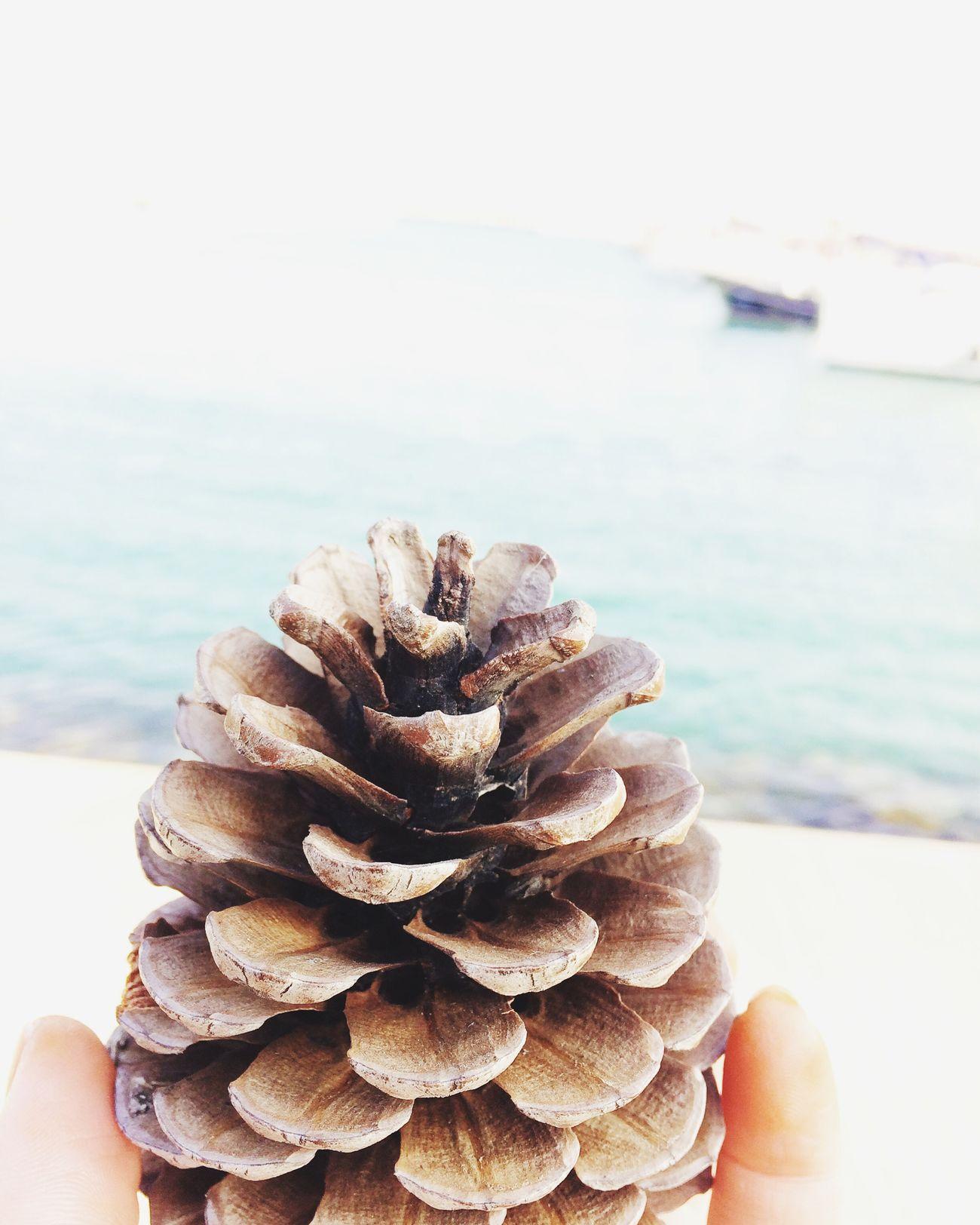 Deniz kenarında güzel bir gün 😂 Sea Nature Close-up Day Huzura Doğru😉 Human Hand