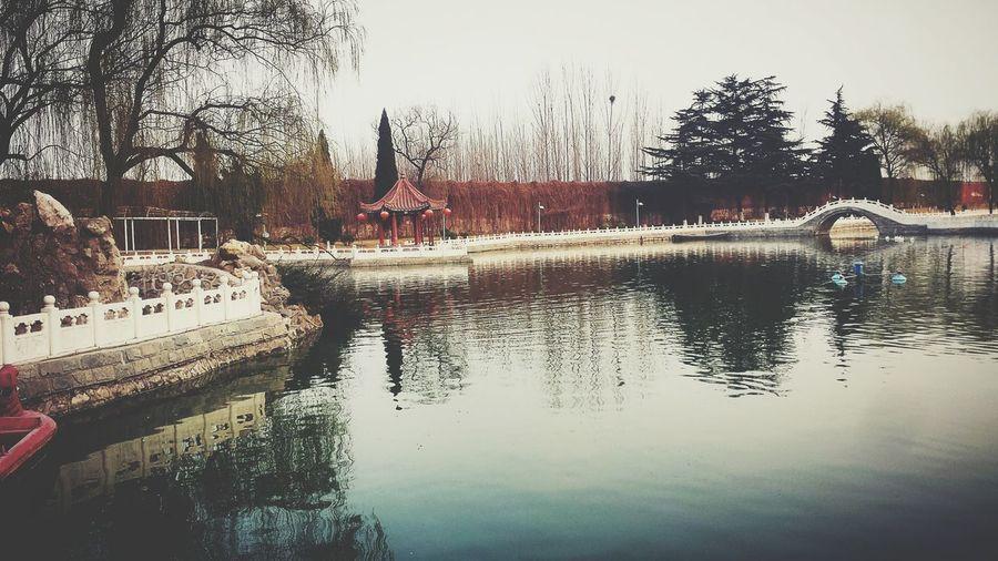 景 First Eyeem Photo