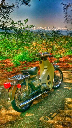 Everyday Education Motorcycles Rusty Retro Super Cub Honda