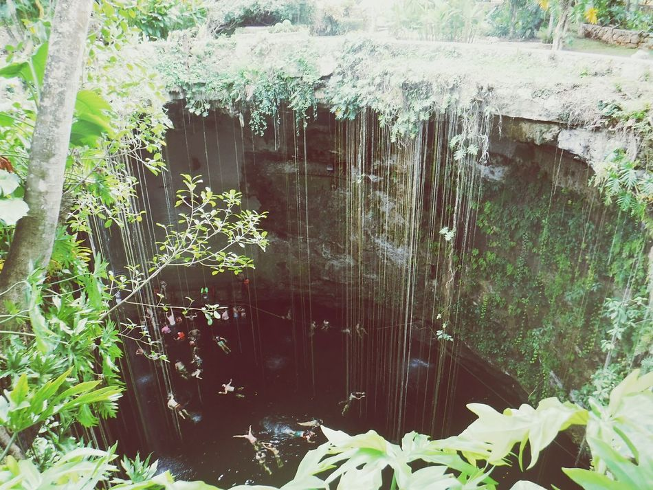 Cenotes Cenote—México Cuevasdelmar Natural Condition Miles Away
