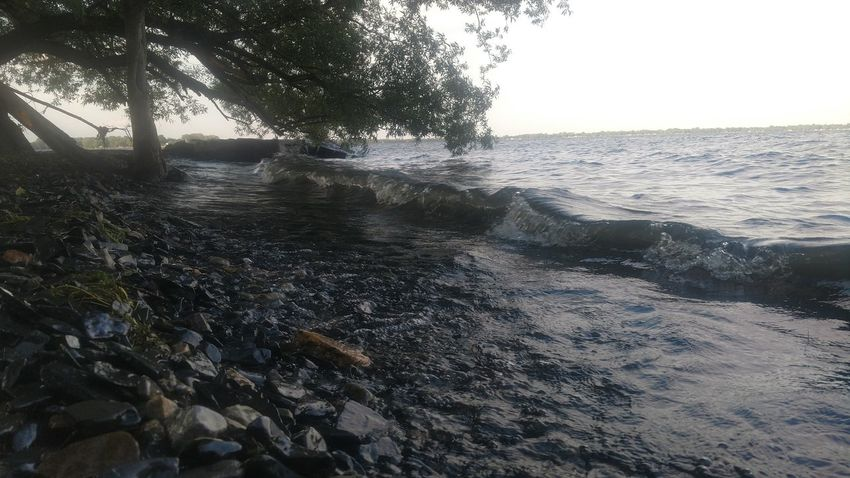 Along Lake Champlain in NY. Beach Sea Water Nature Sand Outdoors No People Day Backgrounds Wave Beauty In Nature Sky Tree Close-up