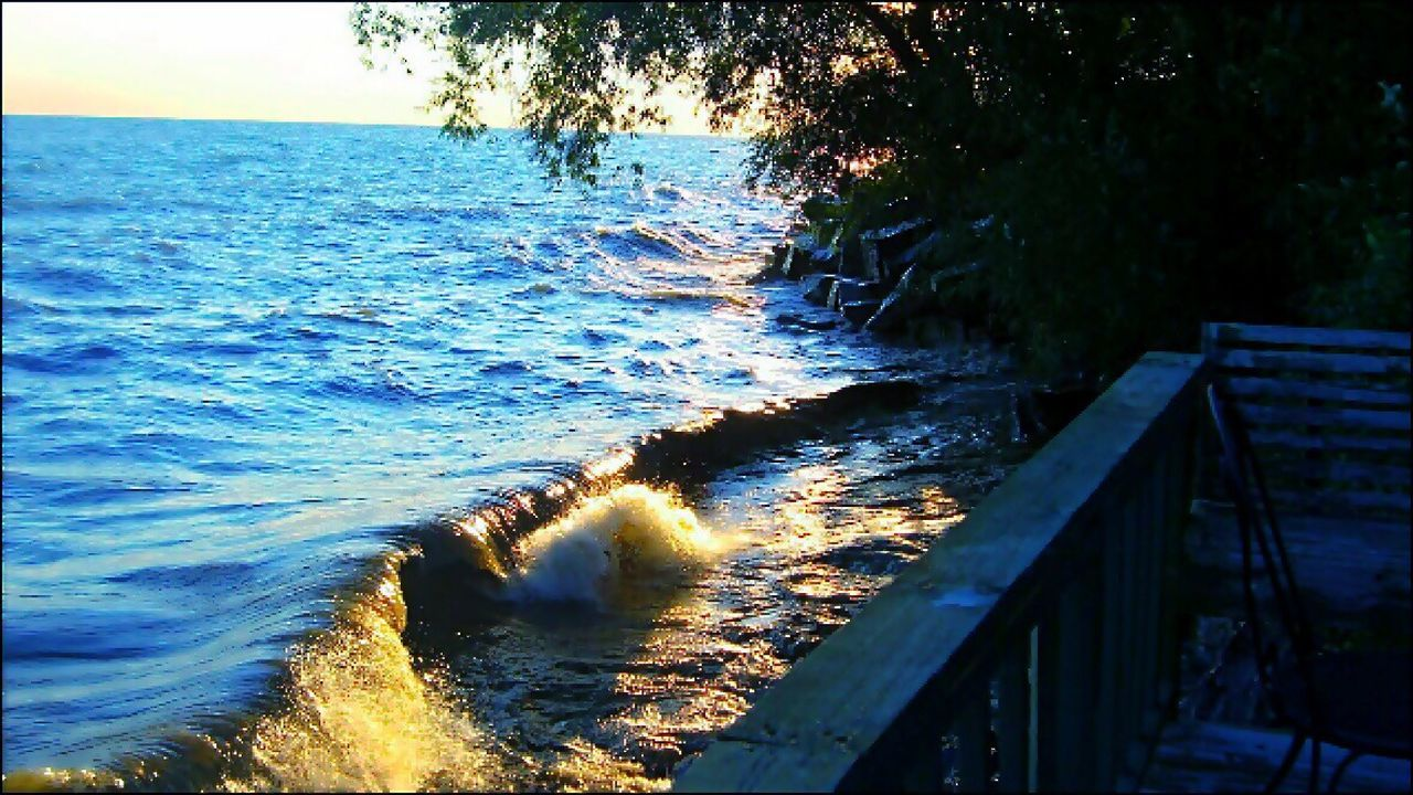 water, sea, nature, wave, no people, beauty in nature, outdoors, motion, tree, day, scenics, sky