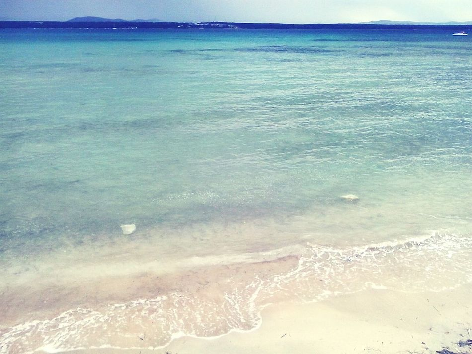 Showcase March Seaside Seascape Sea Life Sea And Sky Sea Adriaticsea Pasmanisland Water_collection Summer ☀ Summerish