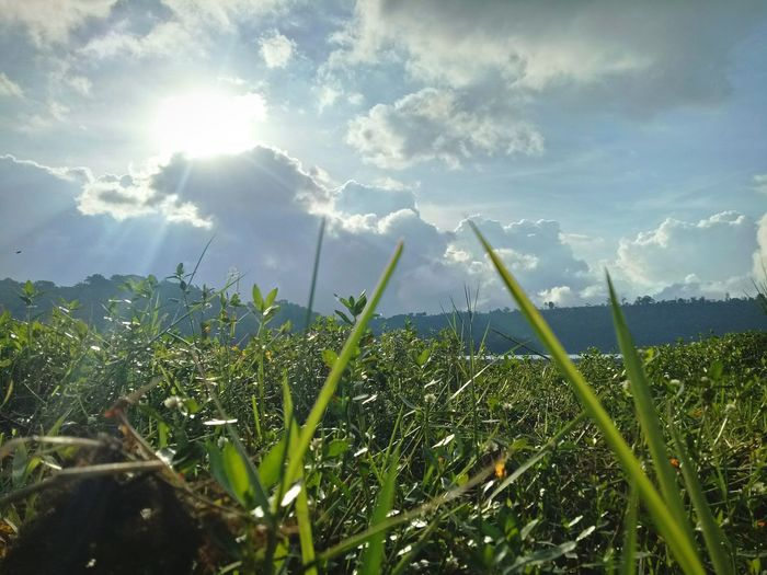 Mobilephotography Cloud - Sky Field Nature Outdoors Day No People Landscape Sky Beauty In Nature Water Grass Rural Scene Freshness Growth Bali Lake Lake View Lakeside Lakescape Sunlight Sunbeam Green Color Tranquility Tranquil Scene Sun Scenics Agriculture
