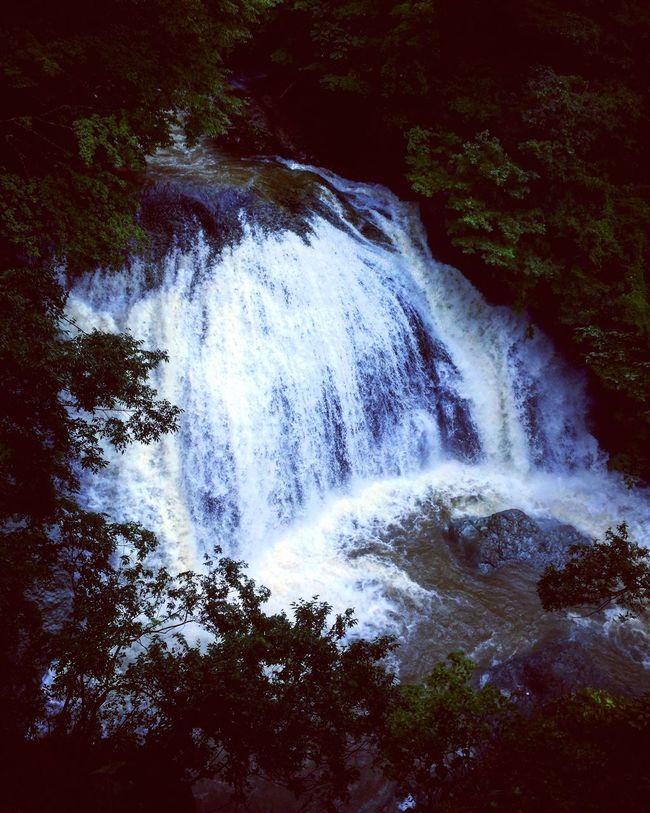 Like it. Waterfall Beauty In Nature YAMAGATA Miyagi