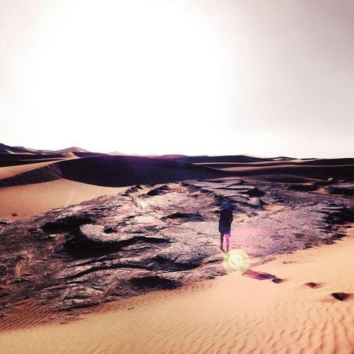Walking Desert Sahara Desert Sun Hot Day