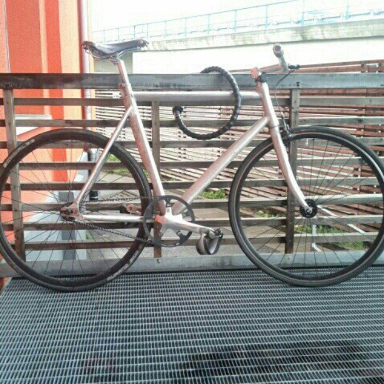 Fixie Bike Beltdrive no grease anymore brillant