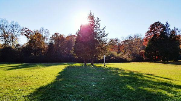 Huntington Ny Autumn Collection Autumn Colors Autumn Trees Autumn Leaves Autumn🍁🍁🍁 Colorful Trees Sun Light Through Trees Sunshine WeatherPro: Your Perfect Weather Shot