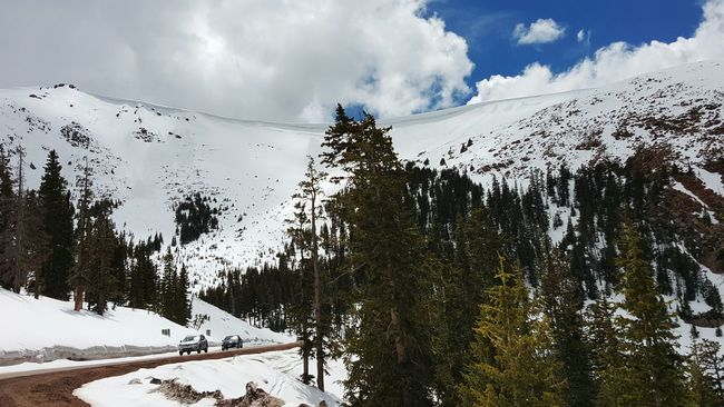 Driving to the top of Pikes Peak in May of 2015. The image was taken at about 11K feet of elevation, just above the snowline. The summit at 14k was closed due to a recent storm. Snow Pikes Peak Colorado Springs Colorado Mountains Rocky Mountains Front Range Pikes Peak Highway Pikes Peak In May Alpine Springtime
