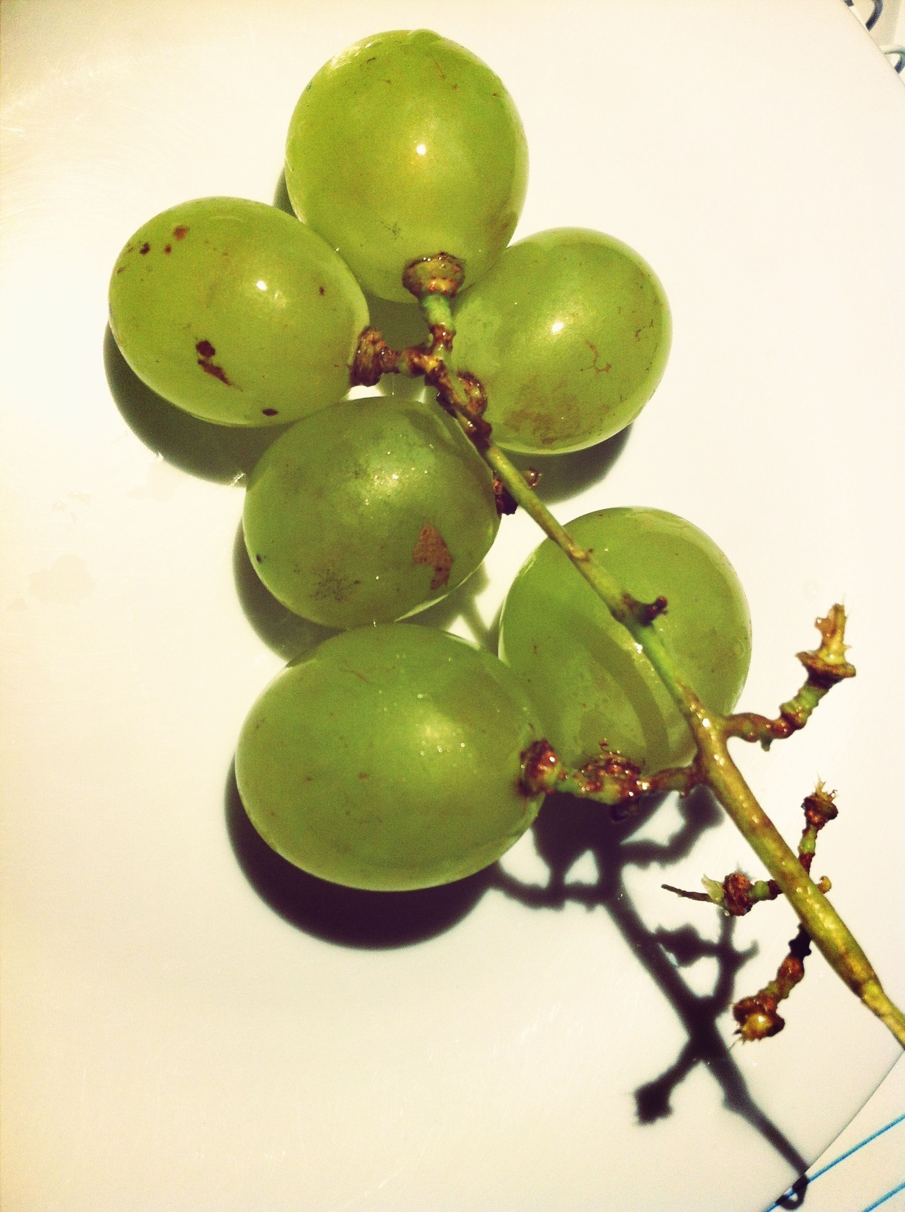 fruit, food and drink, healthy eating, food, green color, leaf, freshness, close-up, hanging, grape, indoors, ripe, still life, branch, table, apple, organic, no people, green, growth