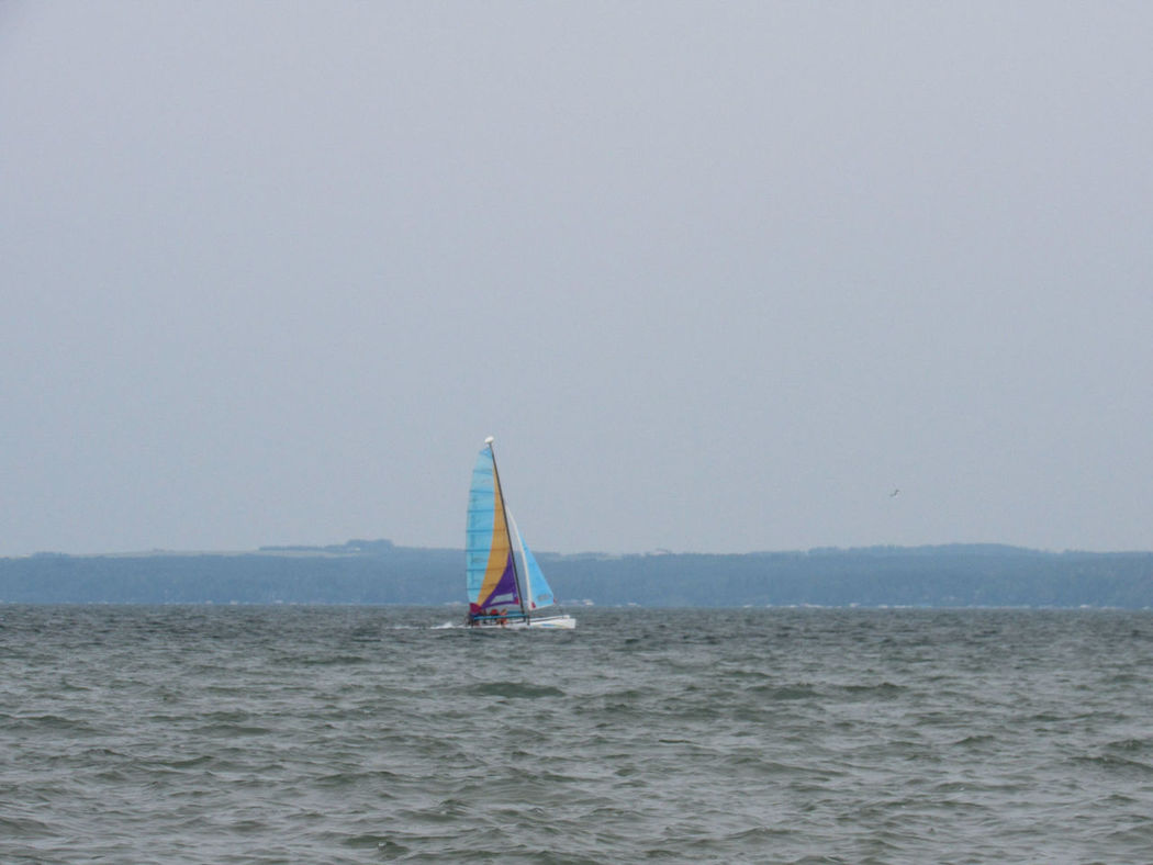 Sailboat Sea Sailing Nautical Vessel Vacations Outdoors Travel Sports Activity Recreational Boat Yacht Regatta Day Leisure Activity Adventure Sport Summer Clear Sky Horizon Over Water Blue Water Sylvan Lake Alberta
