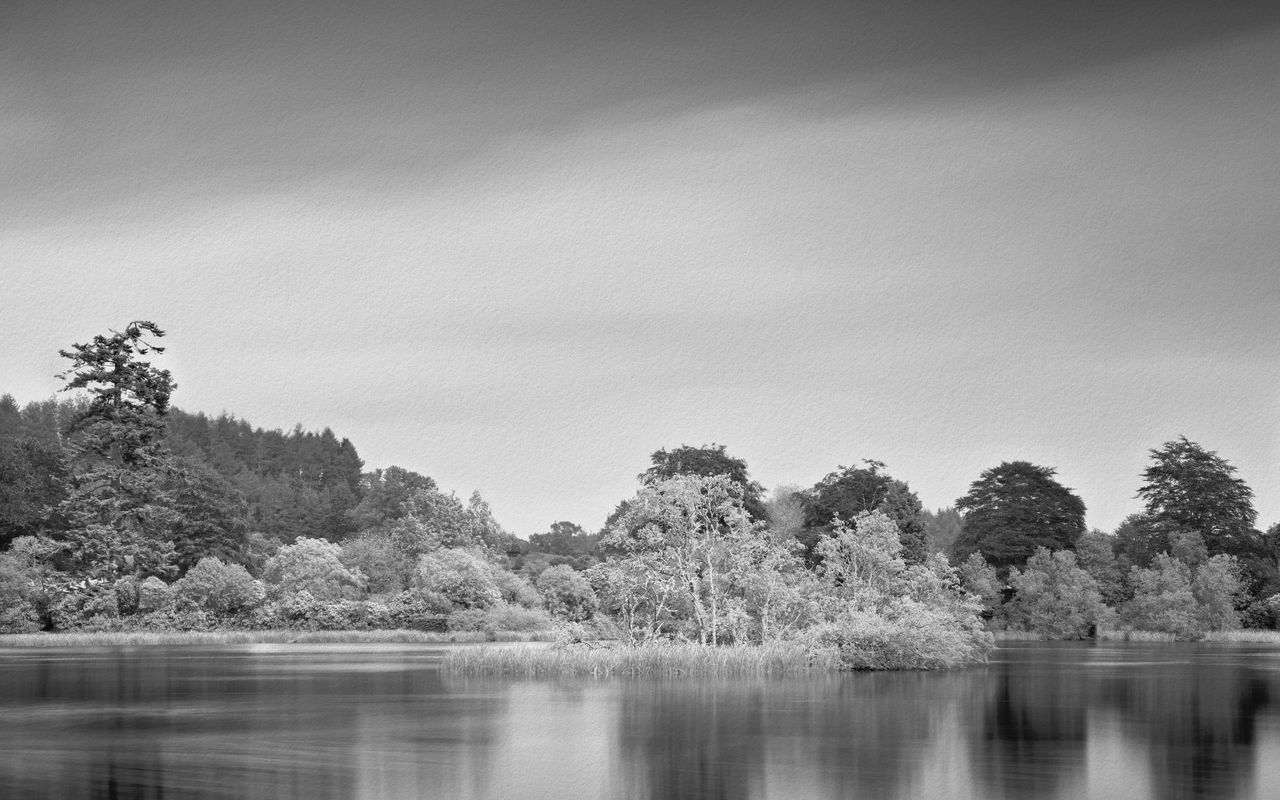 Unnamed Lochan, Buchanty Beauty In Nature Black And White Black And White Photography Landscape Landscape_Collection Landscape_photography Long Exposure Nature No People Outdoors Perthshire Reflection Scotland Sky Sky And Clouds Tranquility Tree Water