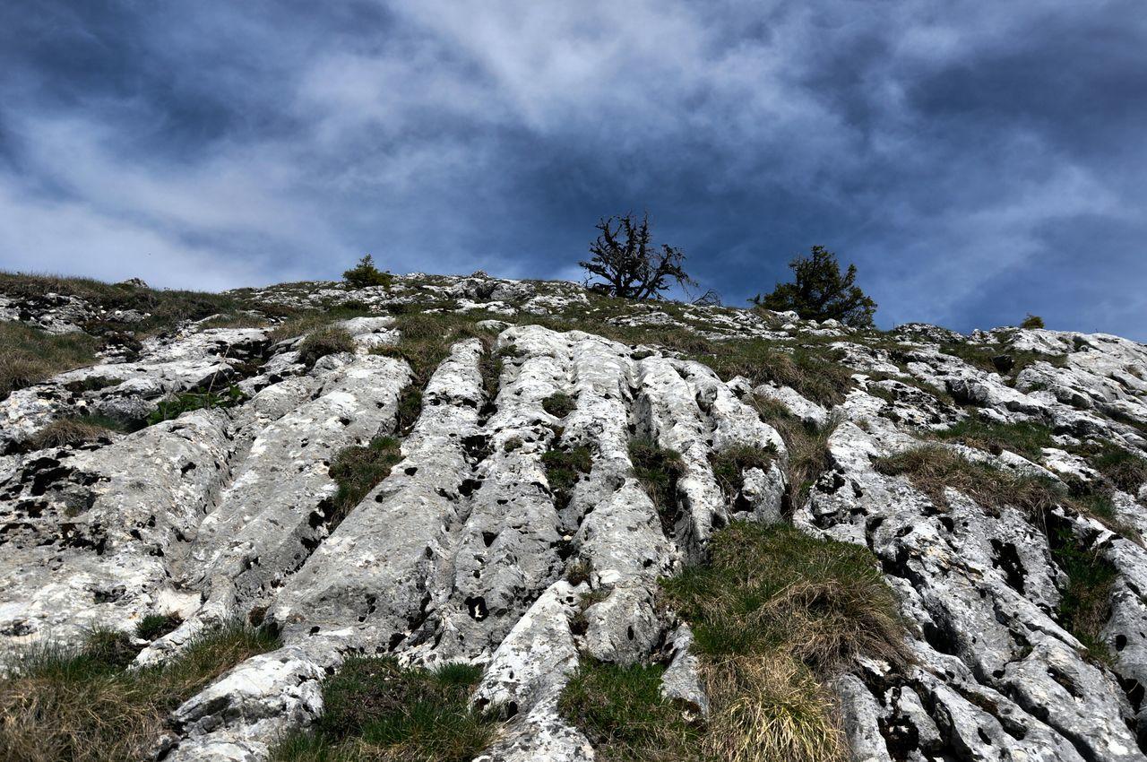Learn & Shoot: Leading Lines Limestonephotos The KIOMI Collection