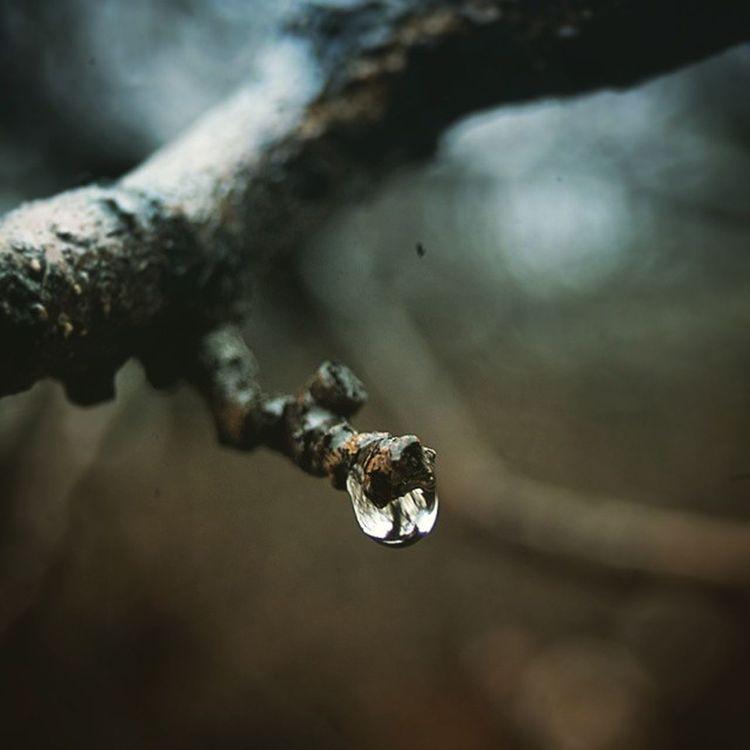 اشک هایی نریخته دارم، و تو آن اندوه، آن سوگ عظیم باش، که نهفته ترینِ بغض ها را می ترکاند... اشک سوگ اندوه بغض قطره عکس عکاسی