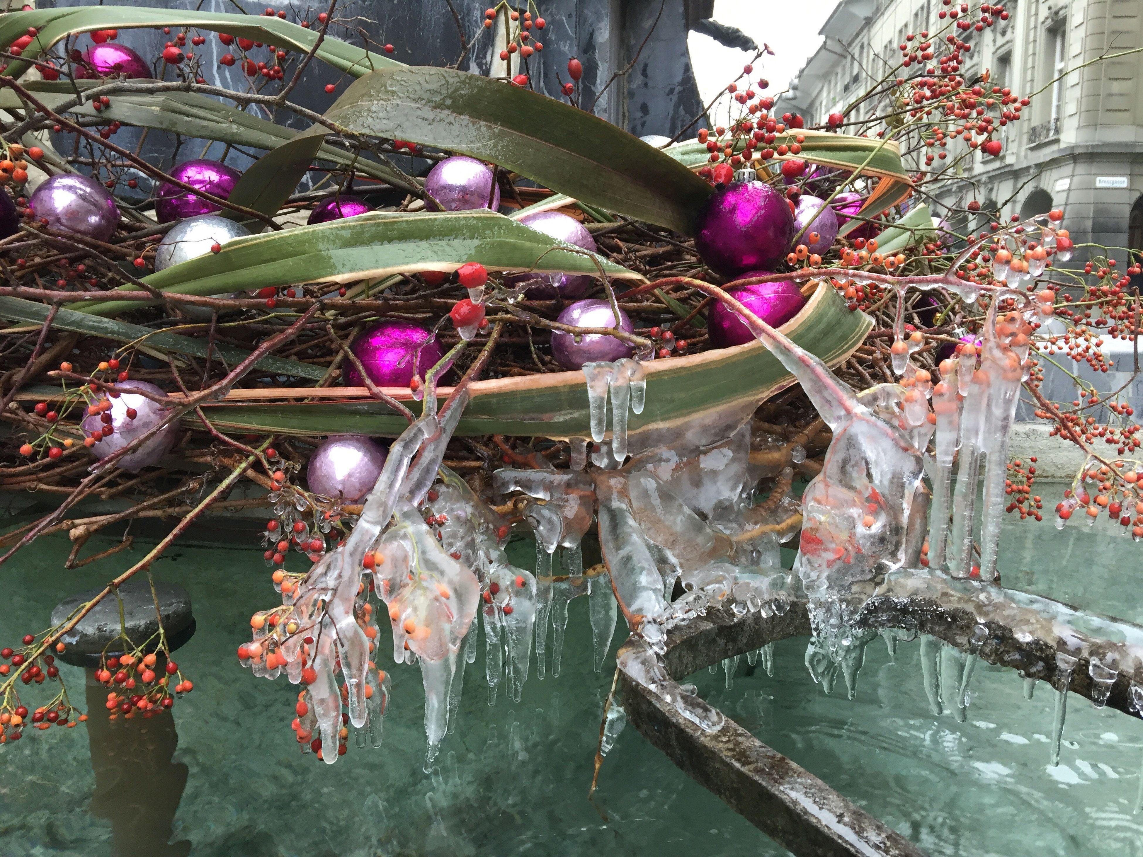 celebration, christmas, christmas decoration, christmas tree, christmas lights, multi colored, christmas ornament, tradition, tree, water, no people, celebration event, outdoors, christmas bauble, close-up, day