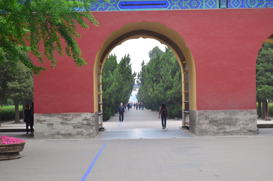 Arch Architecture Archway Built Structure Day Diminishing Perspective Footpath Growth Lifestyles Pathway Sky Street Scene Temple Of Heaven Park The Way Forward Tree Walkway