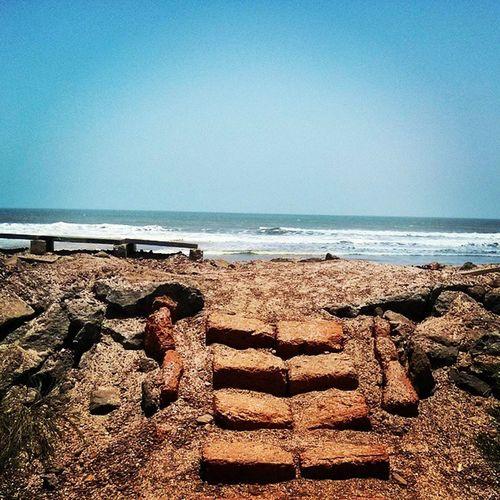 Rejuvenation.. Konkancoast Ladghar_beach Konkandiaries Peace Lovely Serene Bliss Beachlife Sea
