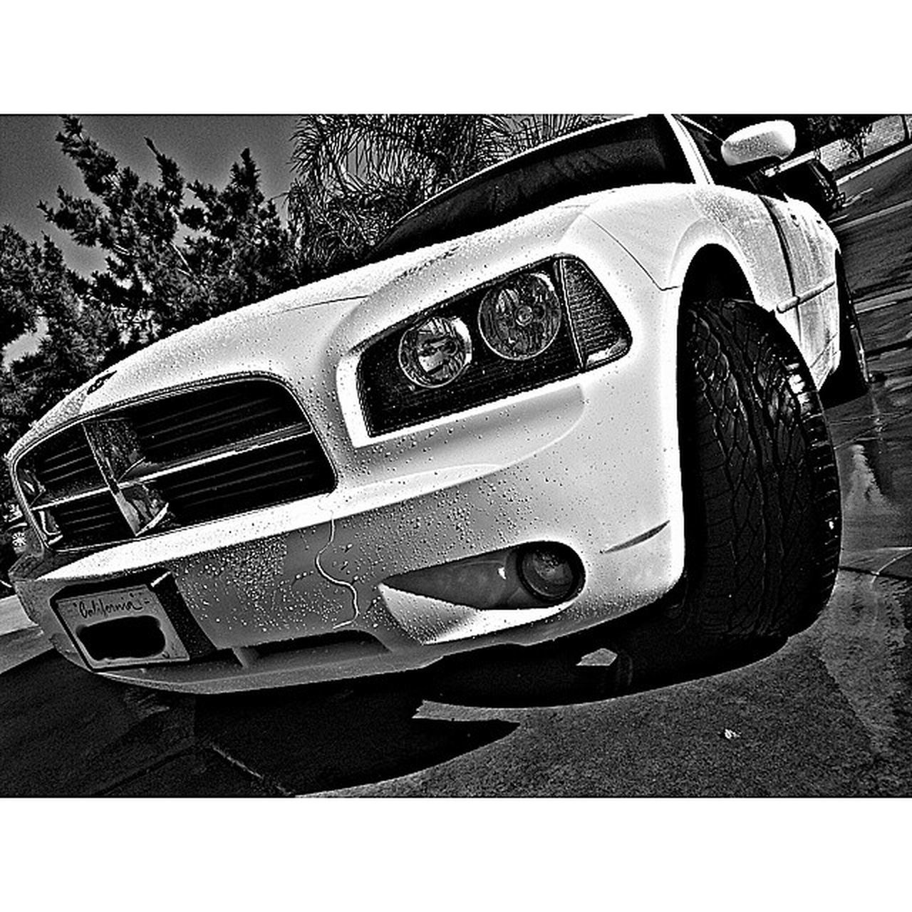Bath time :) 2010DodgeCharger Dodgecharger Dodge LostPhotography photo photos pic pics picture photographer pictures snapshot art beautiful instagood color all_shots exposure composition focus capture moment photoshoot photooftheday hdrimage hdr_gallery hdr_love hdrfreak hdrama hdrart