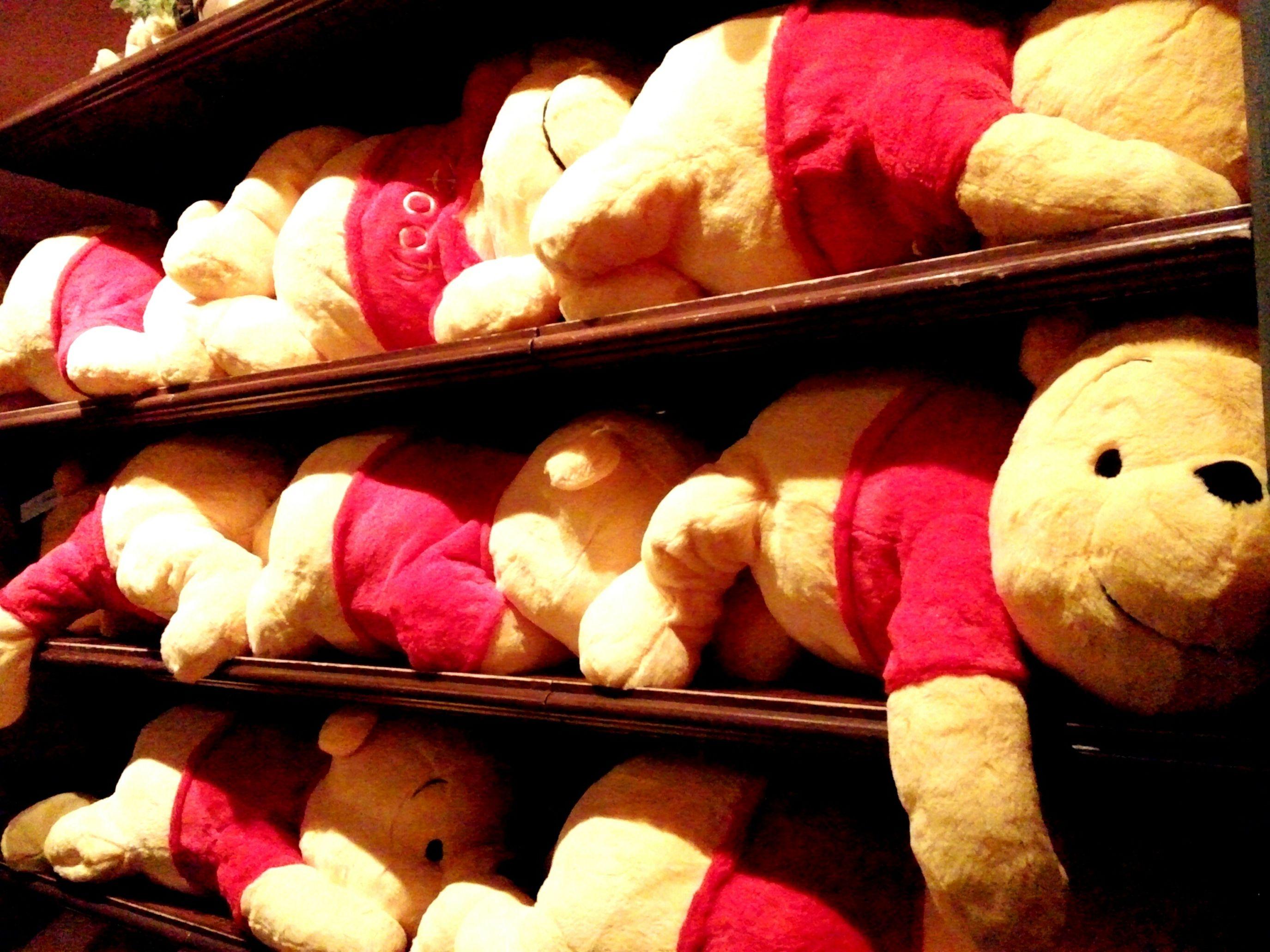 02282016 Pooh ぷーさん ぬいぐるみ ディズニーランド ハチミツ食べたい 買って欲しそうにこっちを見ているプーさん達♪