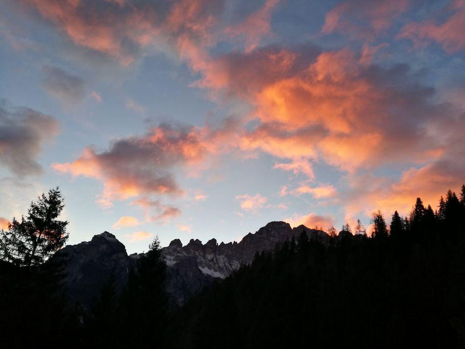 Sunrise Pine Tree Nature Cloud - Sky Landscape Mountain Mountain Range Beauty In Nature No Filter IT