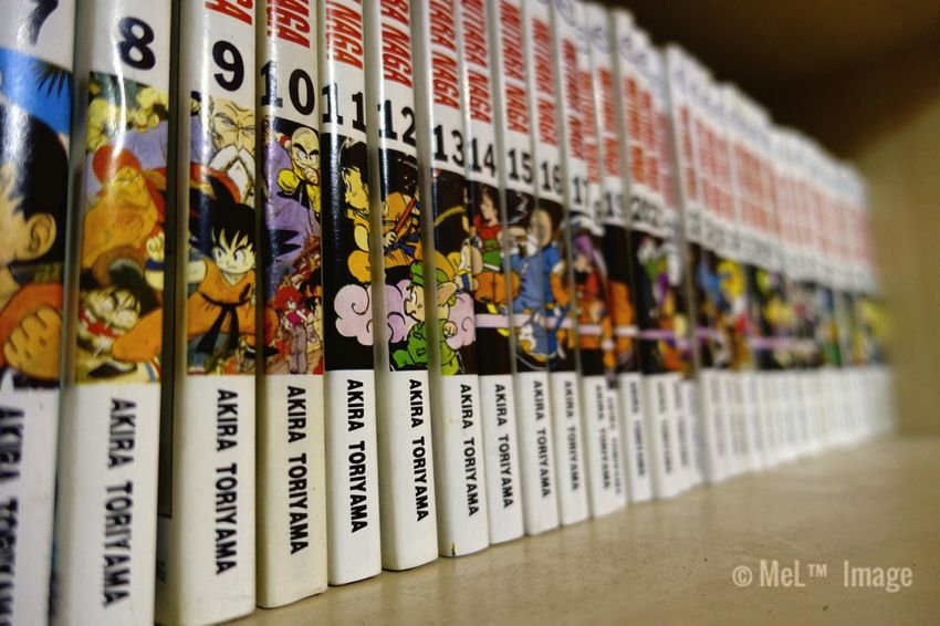 Masterpiece ♥ Dragonball Indoors  Close-up Books ♥ Manga: Fan Art Comics Lovers Akiratoriyama Songoku Malaysia