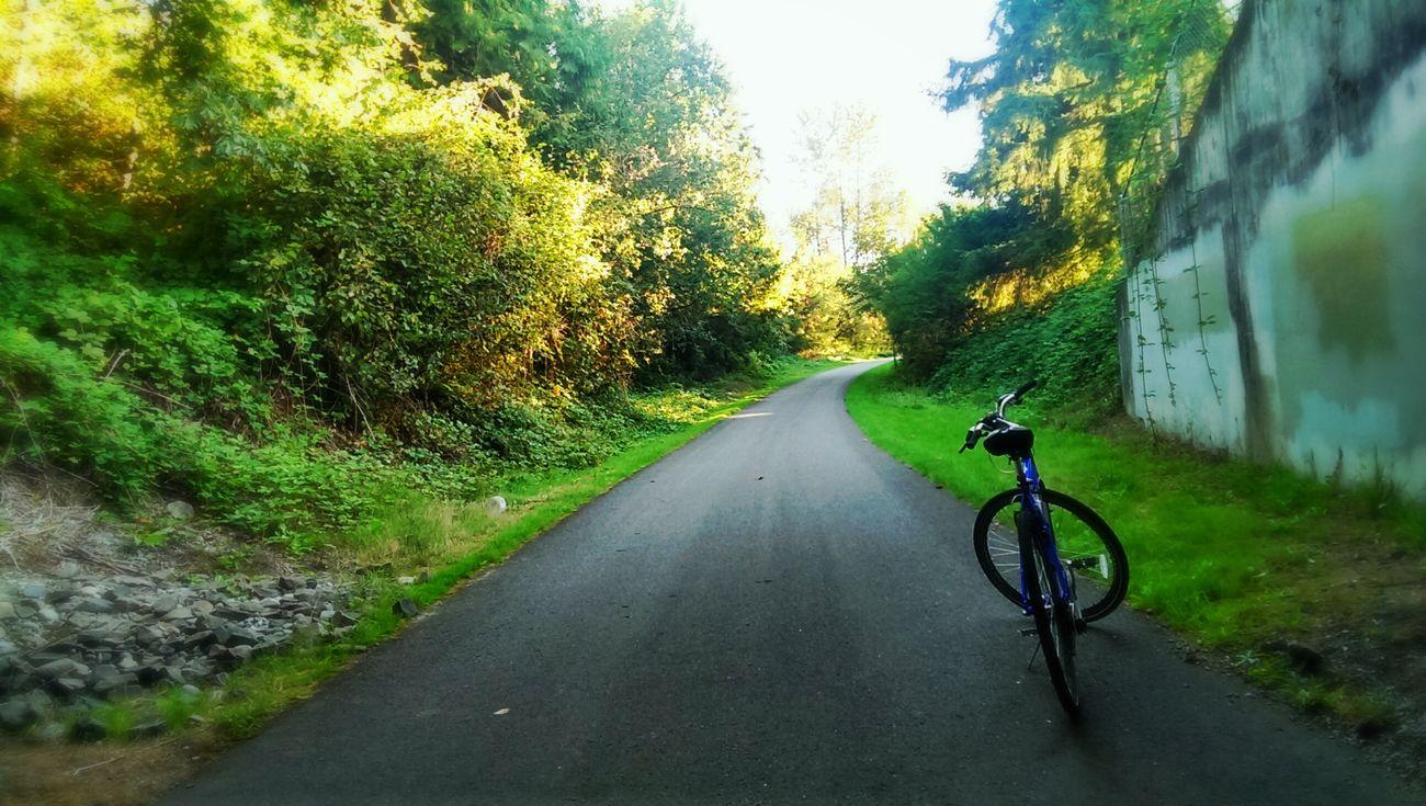 take off. Naturefun Digital Meets Nature Bicycle Ascension